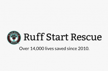 Why Ruff Start Rescue is foster-based